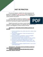 raport_de_practica