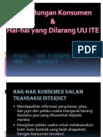 Perlindungan Konsumen dalam Transaksi Internet - Nin Yasmine Lisasih