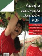 skola-gajenja-jagoda-2