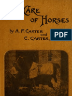 The Care of Horses