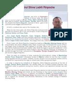 Biography of Namkha Khyung Dzong Chogtrul Shiwa Lodro Rinpoche