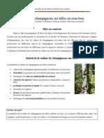 Champignons Sur Billes en Sous Bois