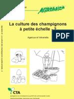 La Culture Des Champignons a Petite Echelle 2