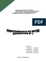 Trabajo 1 Procesamiento de Datos Definitivo