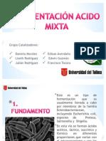 Grupo Catalizadores, Expo Fermentación Acido Mixta