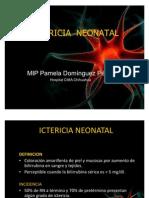 ICTERICIA  NEONATAL2