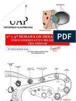 clase91discobilaminartrilaminar-090620230649-phpapp02[1]