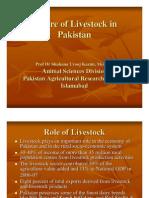 Future of Livestock in Pakistan by Shahana