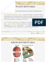 Erupcion_Dentaria