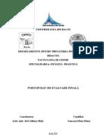 Structura Portofoliu DPPD Litere
