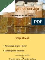 Fermentacao _alcoolica