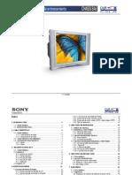Manual de Entrenamiento Sony BA6