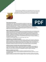Nutrición para musculación