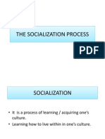 The Socialization Process