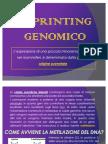 [2009-2010] Seminari - Imprinting Genetico (Faraci, Iraci, Giadone)