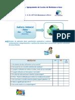 VI Auditoria Ambiental 2010-2011