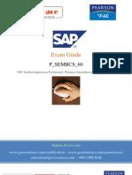 Precisetrace_com Examguid Bcs Erp6