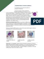 Enfermedades benignas de glóbulos blancos