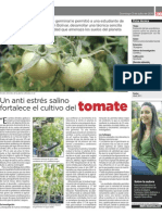 Un anti estrés salino fortalece el cultivo del tomate