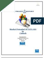 Marketing Potential of TATA AIG