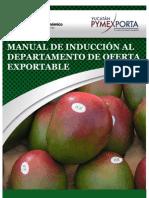 Manual  para los Servicios Sociales de Oferta Exportable