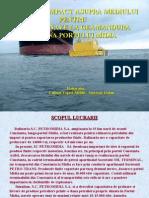 Portului Midia