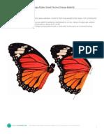 Msl 1010 Fine Specimens Butterflies 1