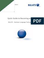 Bulats Guide