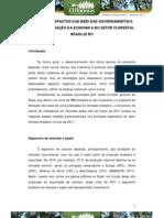 ana_n_brasileiro_4963