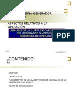 Turbina-generador_curva Cargabilidad - Copia