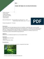 Guia 2 - Conteo de Las Clases de Hojas en Un Area de Terreno.