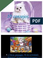 Diez Consejos Mod