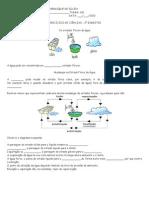 Exercicios água - VI fase