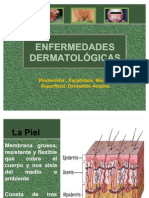 Enf Dermatologicas