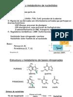 Metabolismo nucleotidos_2007