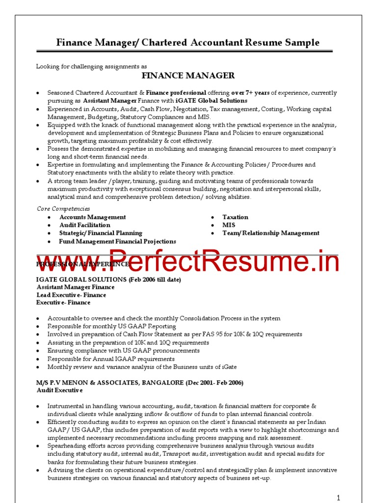finance manager chartered accountant resume sample