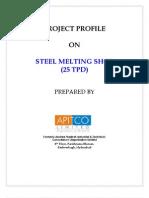 Steel Melting Shop