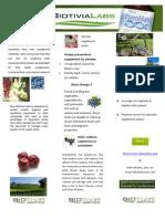 phamplet.docx 2