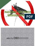 Penyuluhan Dbd (Demam Berdarah Dangue)