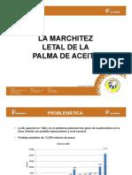 3_Marchitez_Letal
