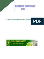 Overall Banking Performance of Pubali Bank Ltd