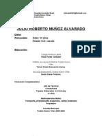 Plan de trabajo, Julio Muñoz a través de Pueblo Nuevo Viñas Vota.