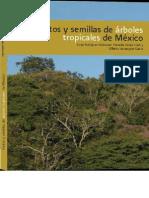 Frutos y semillas de árboles tropicales de México