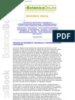 Bio Energetic A - Librobotanicaonline - Crecimiento Vegetal