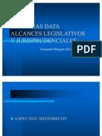 Habeas Data Dr. Delgado Alvizuri Final[1]
