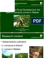 Biofuels and Rural Development
