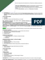 Derecho Mercantil II [Síntesis]