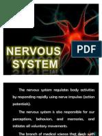 21. Nervous System