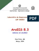 Manual Do ArcGIS PDF
