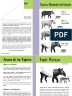 Tapir Specialist Group Brochure Español